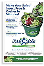 Print advertisement for Pest Catch
