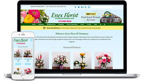 ecommerce-website-homepage-essex